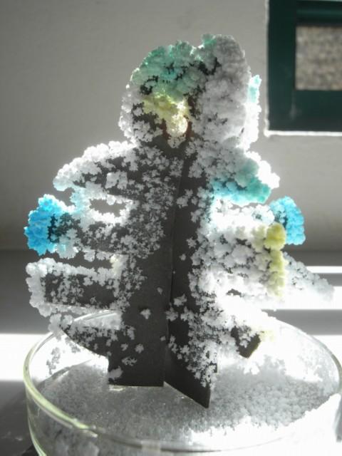 Snow man?